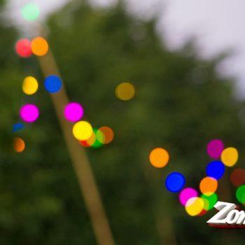 Zomerkriebels feestverlichting Impressie - PrikkabelverhuurNL